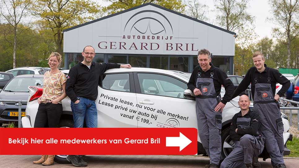 Gerard Bril team